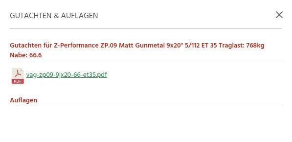 Gutachten Z-Performance ZP.09